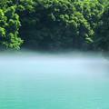 Photos: 霧たちこめる