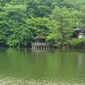 武蔵野の面影