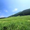 風そよぐ高原