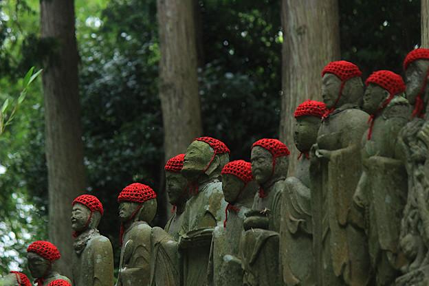 Photos: 裏山に佇む