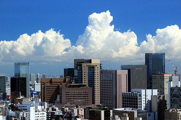 A Hot Summer Tokyo