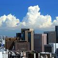 Photos: A Hot Summer Tokyo