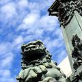 Photos: 獅子 In The Sky