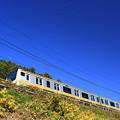 Photos: 仰望電車