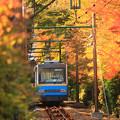 Photos: もゆる秋