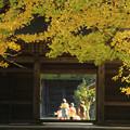 Photos: 秋寺