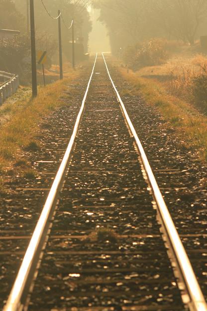 朝陽の当たる鉄路