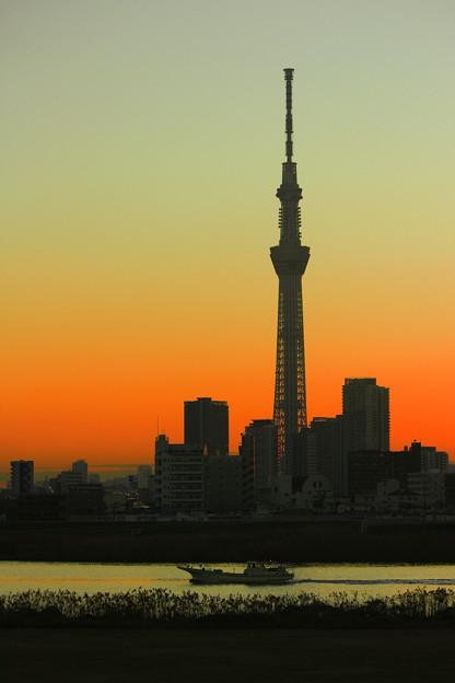 Magic Japan