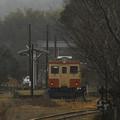Photos: 山中の終着駅