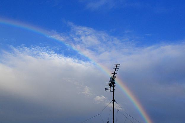 Photos: Rainbow