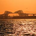 Photos: 夕暮れ恐竜橋