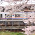 春を駆ける