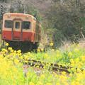 花咲く旅路