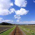 Photos: 初夏への鉄路