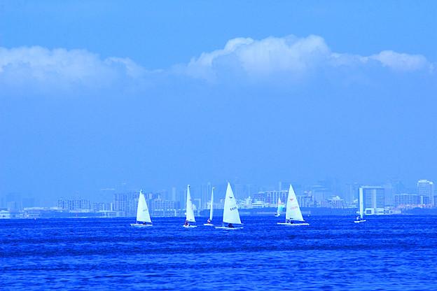 Photos: Sailing