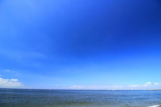 稲毛ブルー