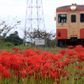 Photos: 初秋の鉄路