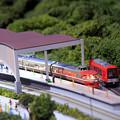 Photos: 箱庭の終着駅