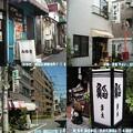 Photos: 私の夏休みの自由研究はスマ...