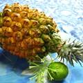 パイナップルとシークワーサー