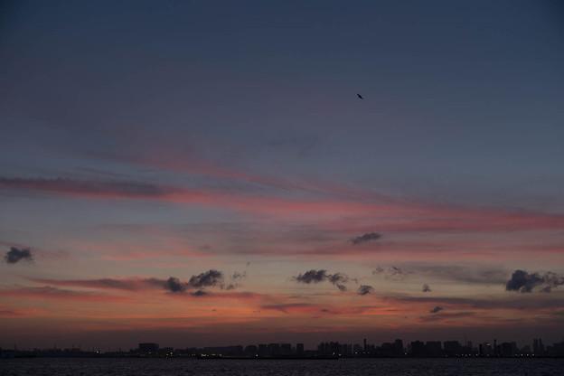 若洲海浜公園の夕景