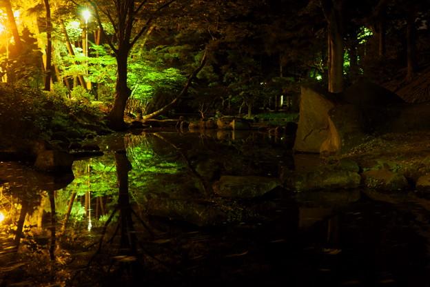 Photos: 夜の公園の静寂