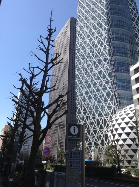 東京モード学園 コクーンタワー