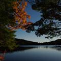秋の白駒池。