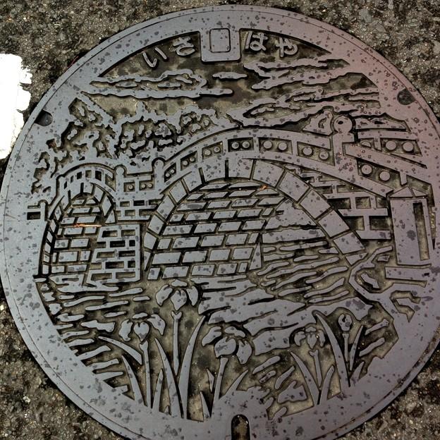 Photos: 諫早市のマンホール