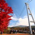 写真: 大分県九重「夢大吊橋」1