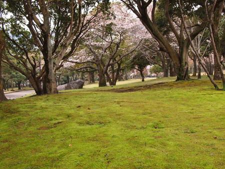 南立石緑地