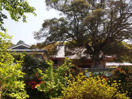 平戸 正宗寺
