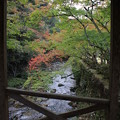 Photos: 巨蟒橋から