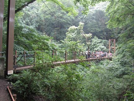 高尾山のつり橋