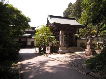 大本坊への門