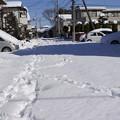雪かきをする前