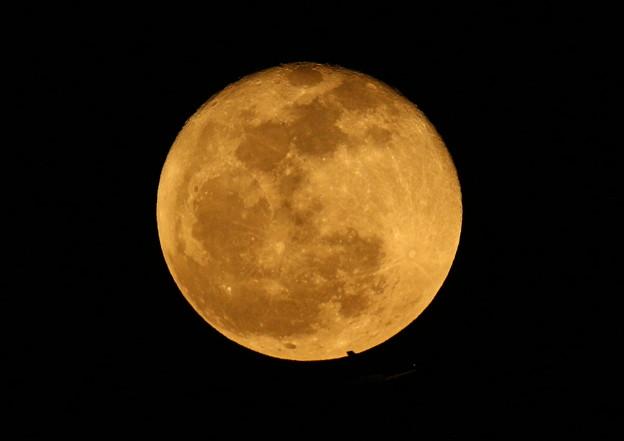 十六夜の月と飛行機 2013-03-28(尾翼だけ)