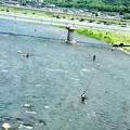 Photos: 写真00015 太公望の戻った酒匂川