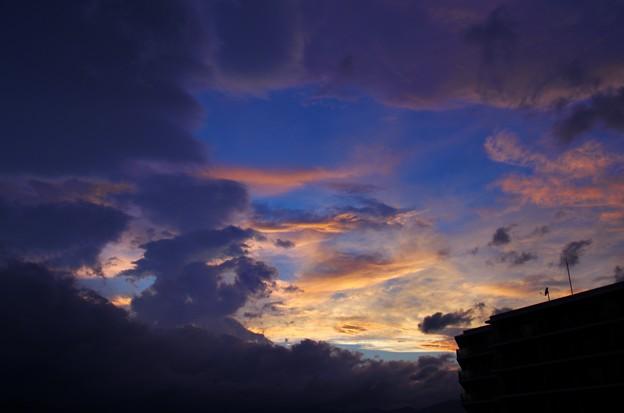 Photos: 写真00019 青空ものぞいていたりして