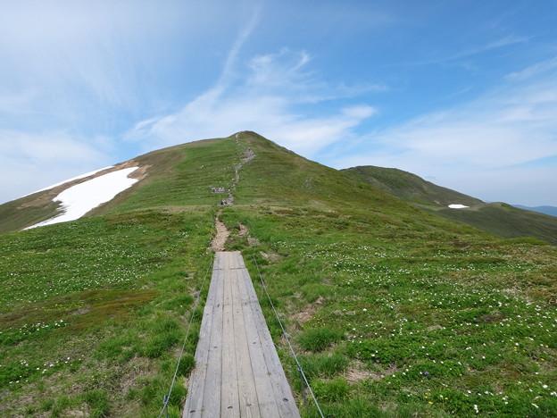 東側からの平標山