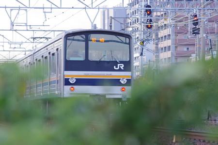 IMGP3015