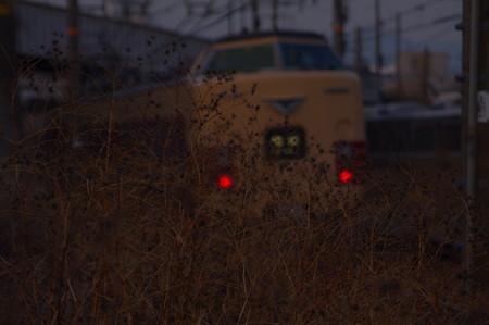 IMGP6055