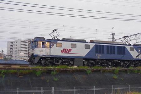 IMGP6798