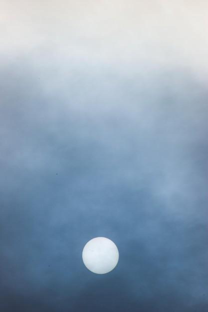 IMGU8501