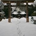雪の福島稲荷神社