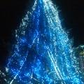 Photos: アクト青山スタジオのツリー。クリスマスが終わってもツリーだけは夜間ライトアップしてます