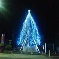Photos: アクト青山スタジオのツリー夜間ライトアップ