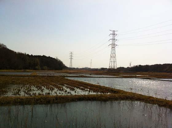 写真: 野田市江川地区