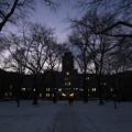 Photos: 北大農学部、冬の夕暮れ