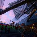 Photos: 黄昏て大階段♪
